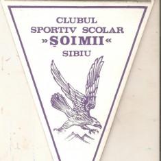 Fanion Clubul Sportiv ''Soimii'' Sibiu