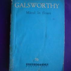 HOPCT  MARUL IN FLOARE / GALSWORTHY   - 1961 - 295  PAGINI