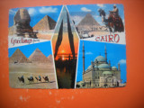 HOPCT 65118 CAIRO EGIPT  -CIRCULATA