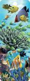 Semn de carte 3D - Coral Garden