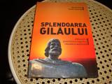 Steiu / Somesan - Splendoarea Gilaului - 2015 - monografie