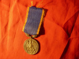 Medalie Inaltatorul Avant - Trecerea Dunarii al II-lea Razboi Balcanic ,Carol I