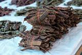 ACACIA CONCINNA - shikakai - salcam de sapun - 5 Seminte pentru semanat