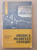 AMERICA OGARULUI CENUȘIU – ROMULUS RUSAN