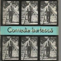 Comedia Burlesca - Iordan Chimet