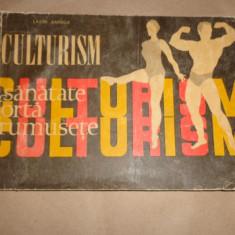 Culturism / programe an 1970/numeroase figuri86pagini- Lazar Baroga