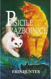 Pisicile Razboinice. Vol. 4: Furtuna