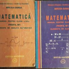 Matematica manuale pentru clasa a XII-a  Mircea Ganga