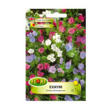 Seminte flori Florian Echium 0.5 g