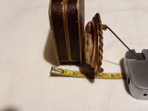 BROSA cu CAMEE in cutia originala FRANTA 1900 vintage SPLENDIDA rara OPULENTA