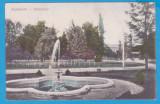 (42) CARTE POSTALA  - BAILE BUZIAS, VEDERE DIN PARC - PERIOADA AUSTROUNGARA