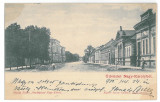 3347 - CAREI, Satu-Mare, Litho, Romania - old postcard - used - 1900, Circulata, Printata