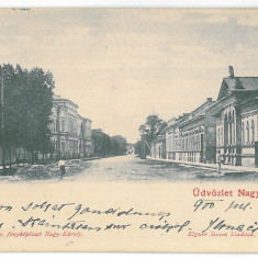 3347 - CAREI, Satu-Mare, Litho, Romania - old postcard - used - 1900