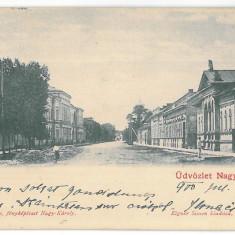 3347 - CAREI, Satu-Mare, Litho, Romania - old postcard - used - 1900