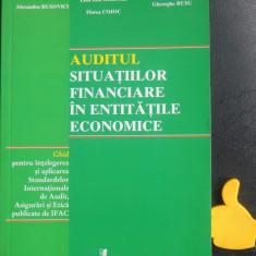 Auditul societatilor financiare in entitatile economice Emil Iota Ghizari
