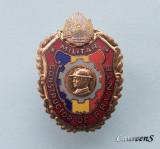 Insigna  Militara  -  CONSTRUCTOR  DE  FRUNTE