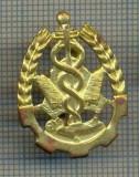 Y 1715 INSIGNA - MILITARA -SEMN DE ARMA - INTENDENTA -PENTRU COLECTIONARI
