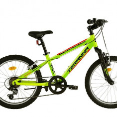 Bicicleta Copii Dhs 2023 Verde Deschis 20