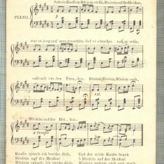AD 396 C. P. VECHE -HEIDEN-ROSLEIN-CIRC.1900-CATRE MARIA ALEXANDRESCU, BUCURESTI