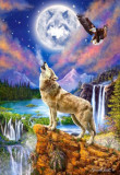 Puzzle Castorland 1500 WOLF''S NIGHT