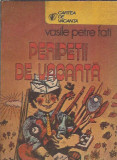 Peripetii de vacanta - Vasile Petre Fati