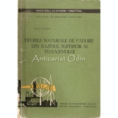 Tipurile Naturale De Padure Din Bazinul Superior Al Teleajenului