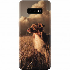 Husa silicon pentru Samsung Galaxy S10 Lite, Alone Dog Animal In Grass
