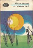 In vapaia lunii - Fanus Neagu