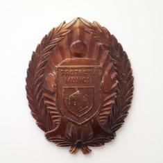 Placheta - Protectia muncii - medalie