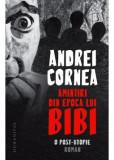 Amintiri din epoca lui Bibi, Andrei Cornea