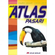 Mic atlas - Pasari - Aurora Mihail, Dumitru Murariu