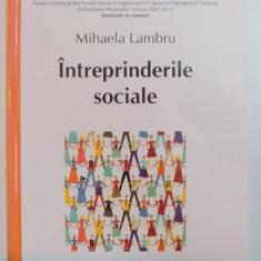 INTREPRINDERILE SOCIALE de MIHAELA LAMBRU , 2013