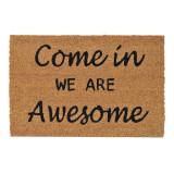 Covoras intrare, 60 x 40 cm, mesaj Come In We Are Awesome, General