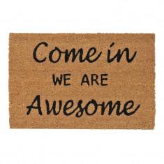 Covoras intrare, 60 x 40 cm, mesaj Come In We Are Awesome