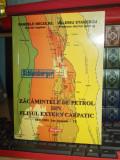 PANDELE NECULAE - ZACAMINTELE DE PETROL DIN FLISUL EXTERN CARPATIC , 2001