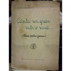 CANTA UN GREER INTR-O VARA ... . STIHURI PENTRU FURNICI de FLORIN IORDACHESCU
