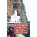 Prietenul nostru, Sfantul Vasile de la Ostrog | Danion Vasile, Areopag