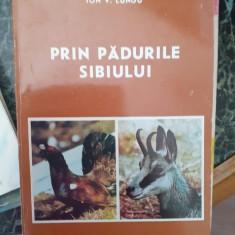 Prin padurile Sibiului – Ion V. Lungu
