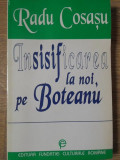 INSISIFICAREA LA NOI, PE BOTEANU-RADU COSASU