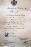 """BREVET PENTRU MEDALIA  """" VICTORIA """"A MARELUI RAZBOI PENTRU CIVILIZATIE 1916-1921"""