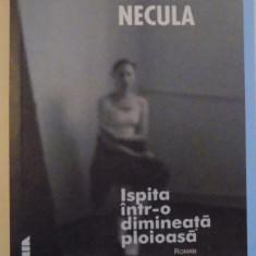 ISPITA INTR-O DIMINEATA PLOIOASA , 2001