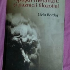 Apasul metafizic si paznicii filozofiei  / Liviu Bordas