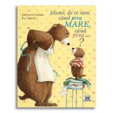 Carte Mami, de ce sunt cand prea mare, cand prea mic? Editura DPH