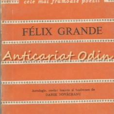 Biografie - Felix Grande