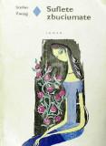 Suflete zbuciumate (1972), Stefan Zweig