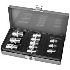 TRUSA TUBULARE TORX E4-E20 CU ADAPTOARE - 11P. Profi Tools