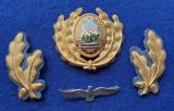 Insigna Militara Ofiter AVIATIE - Coifura insemn cascheta SEMN DE ARMA AVIATOR