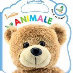 Invatam animale/Cuberdon