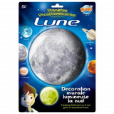 Cumpara ieftin Decoratiuni de Perete Fosforescente - Luna