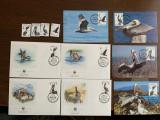 Insulele virgine - pelican - serie 4 timbre MNH, 4 FDC, 4 maxime, fauna wwf